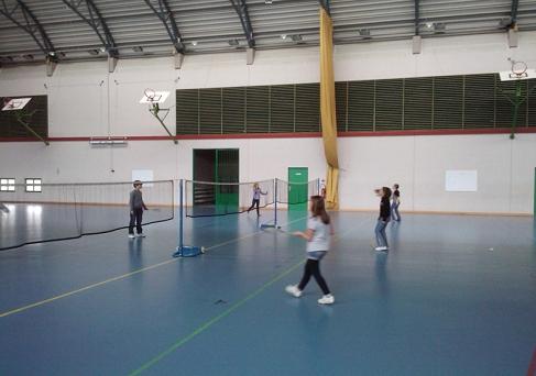 Badminton - CM1/CM2 - Mme MARSCHAL  - Féria - L'Institut de l'Assomption à Colmar (Haut-Rhin, Alsace)